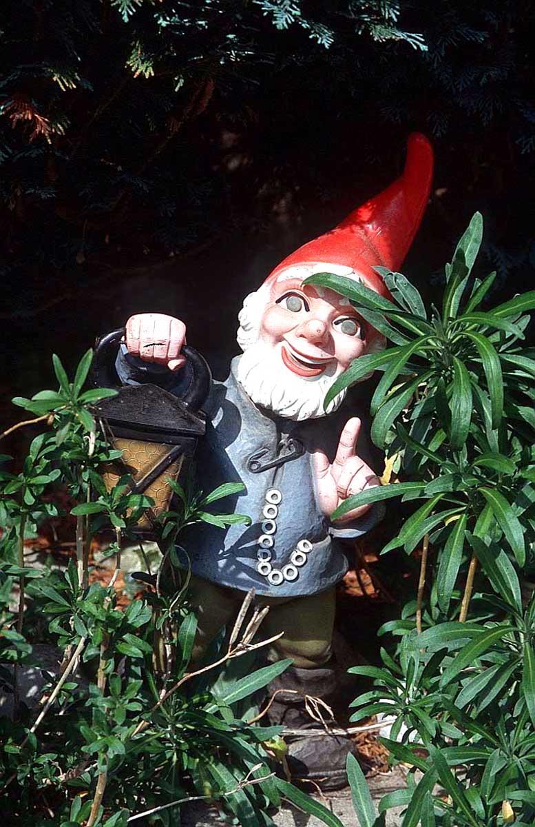 garden-gnome-q1g5