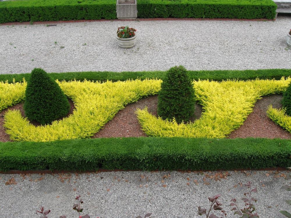 Garden design 101 using contrasting foliage colors for Garden design 101