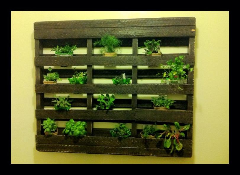 Diy vertical garden made of a pallet master garden for How to make a vertical garden using pallets