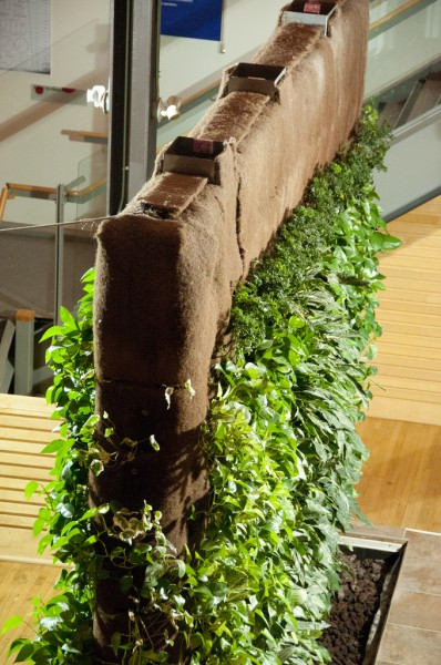 indoor-living-wall1-398x600